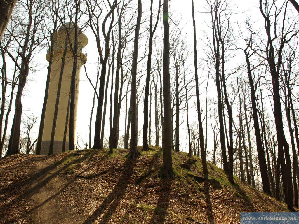 Remont wieży