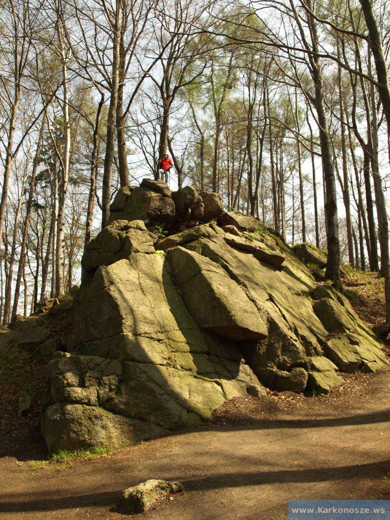 Na szczycie skały
