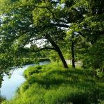 Rzeka Bystrzyca