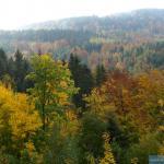Jesienny obraz karkonoski
