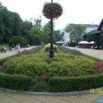 Deptak w Szczawnie